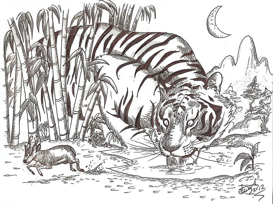 Ngandong Tiger By Hodarinundu On Deviantart