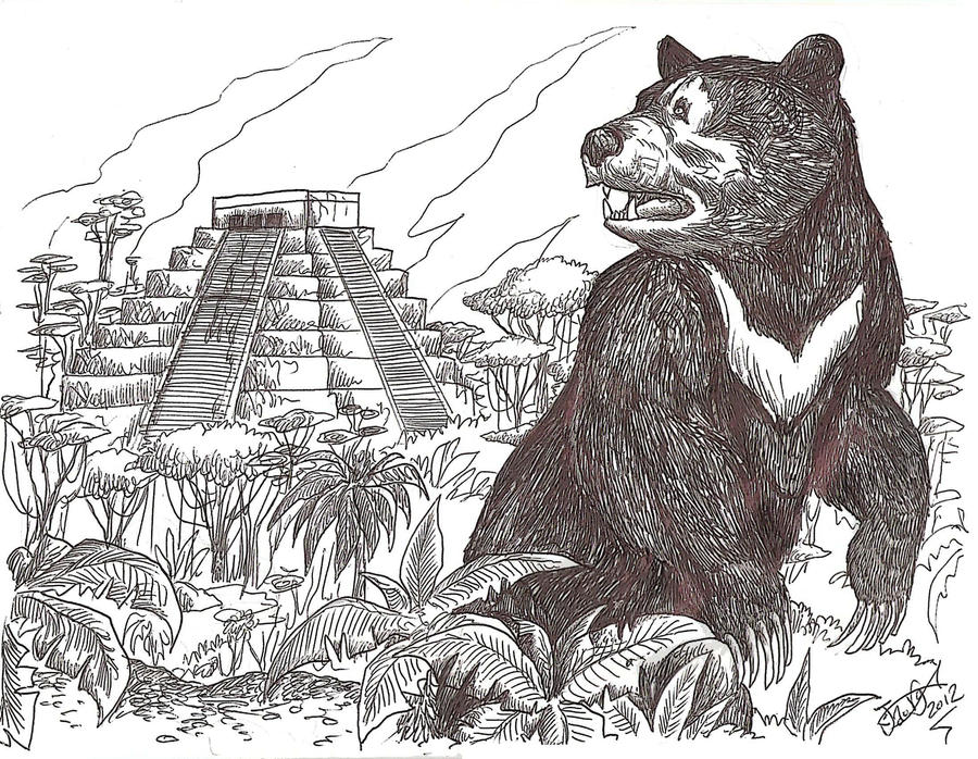 Last of the Maya Bears? by HodariNundu