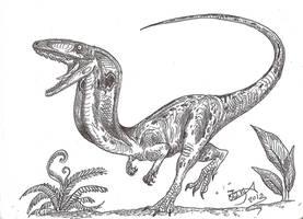 Segisaurus spreads its hood by HodariNundu