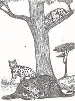 Tres tristes tigres (dientes de sable) by HodariNundu