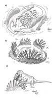 Strangely Spinosaurus