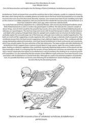 Acridotherium paper finally out by HodariNundu
