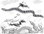 Real Life Sea Serpents