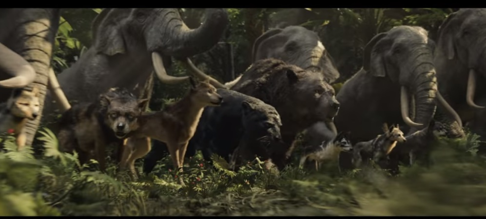 Jungleoflk by HodariNundu