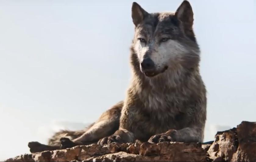 Wolfak by HodariNundu