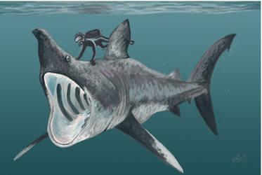 Diving with Cetorhinus huddlestoni by HodariNundu