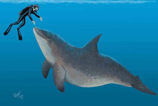 Diving with Macrokentriodon by HodariNundu