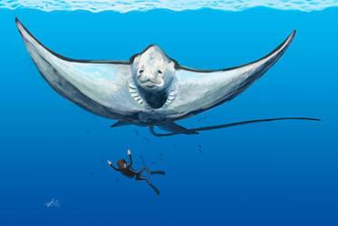 Diving with Aetobatus by HodariNundu