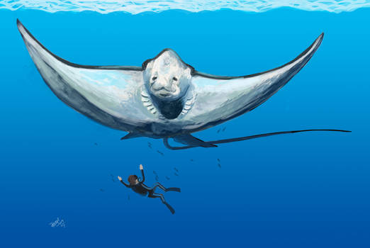 Diving with Aetobatus by HodariNundu