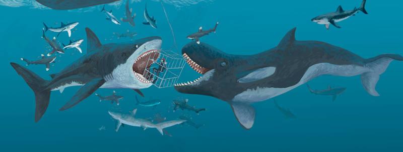 Diving with Sea Monsters!! by HodariNundu