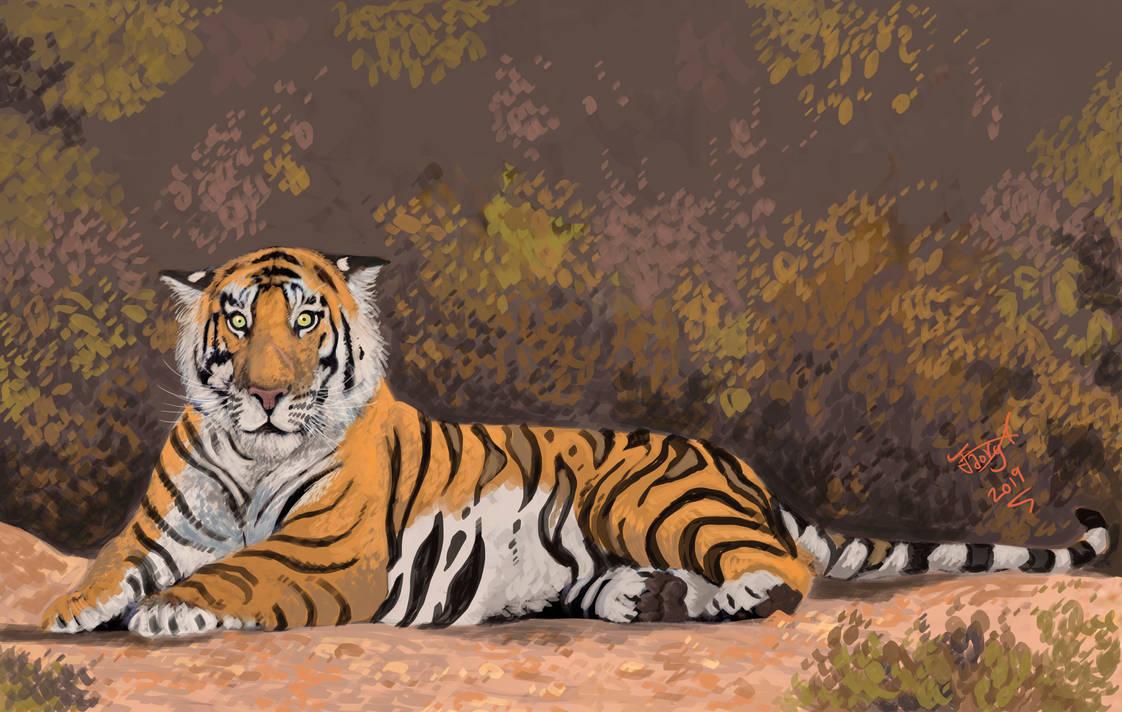 Tiger by HodariNundu