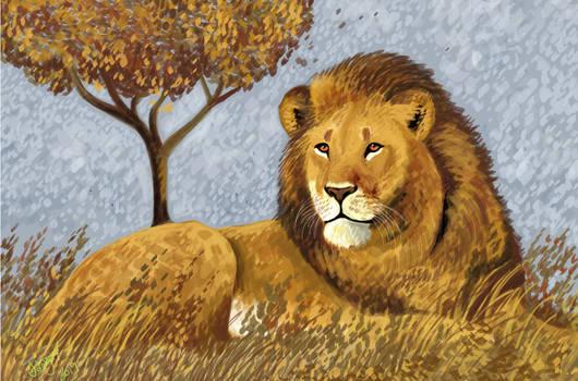 Lion by HodariNundu