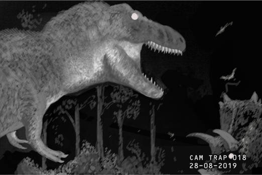 Dino Cam Trap