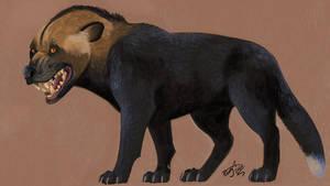Aenocyon: Dire Wolf Reborn?