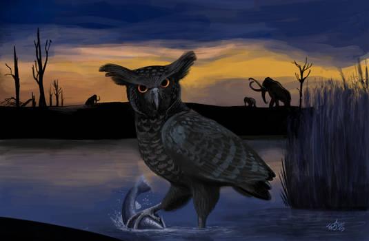 Oraristrix brea