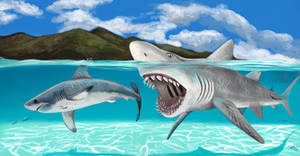 Megalodon: the early days
