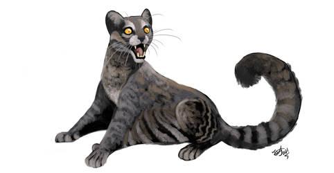 Commission- Ccoa (gliding cat)