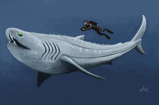 Commission- Barychourevon, the war-axe shark!