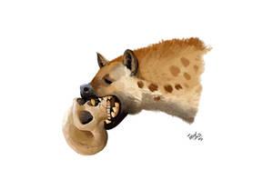 Crocuta, Crusher of Cavemen
