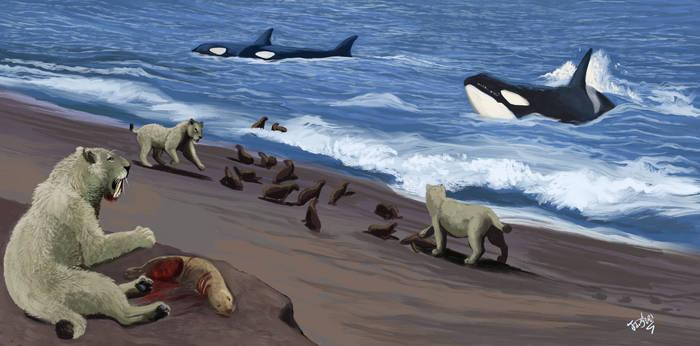Patagonian Predators