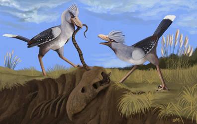 The Last Terror Birds