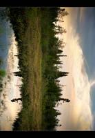 Sunnyside Marsh by tfavretto