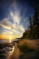 Sunnyside Beach by tfavretto