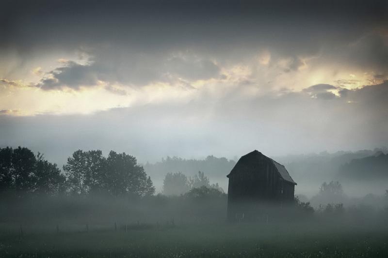 Foggy Morning in Sylvan Valley by tfavretto