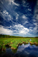 Portlock Marsh by tfavretto