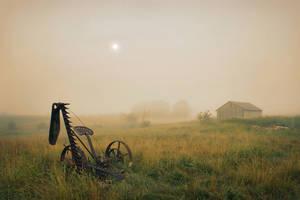 Fog in the Farmland