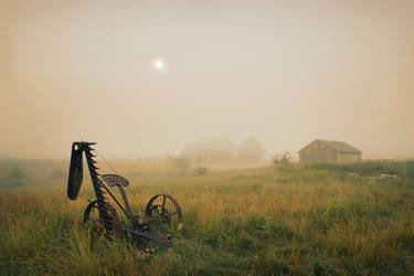 Fog in the Farmland by tfavretto