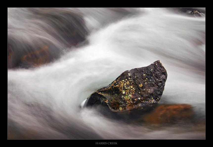 Harris Creek by tfavretto