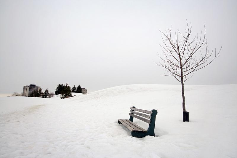 Winter in Bellevue Park by tfavretto