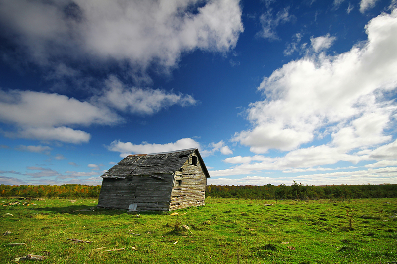 Shack at Strawberry Point by tfavretto