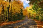Log Slide Road
