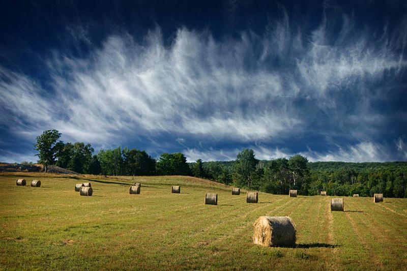 Fields of Plummer Township by tfavretto