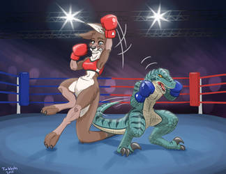 Boxing by TimWeeks