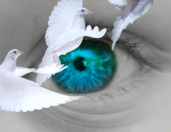Doves around eye by aquabot