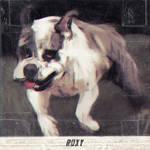 Roxy the derpy english bulldog