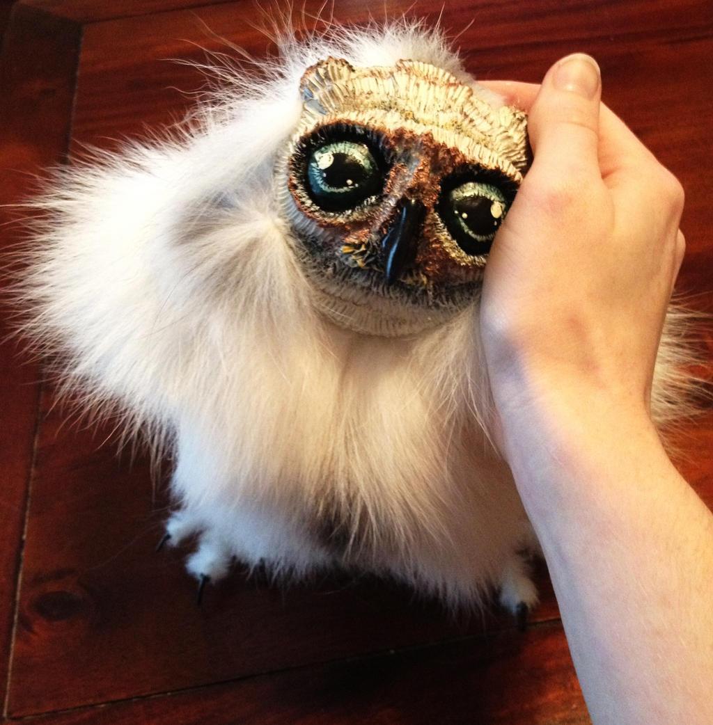 Little Baby Owl By Darkangellord69