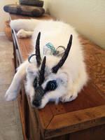Fantasy Tundra Fox Plush by darkangellord69
