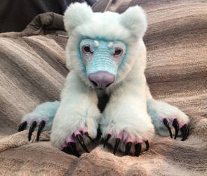 Frost Polar Bear