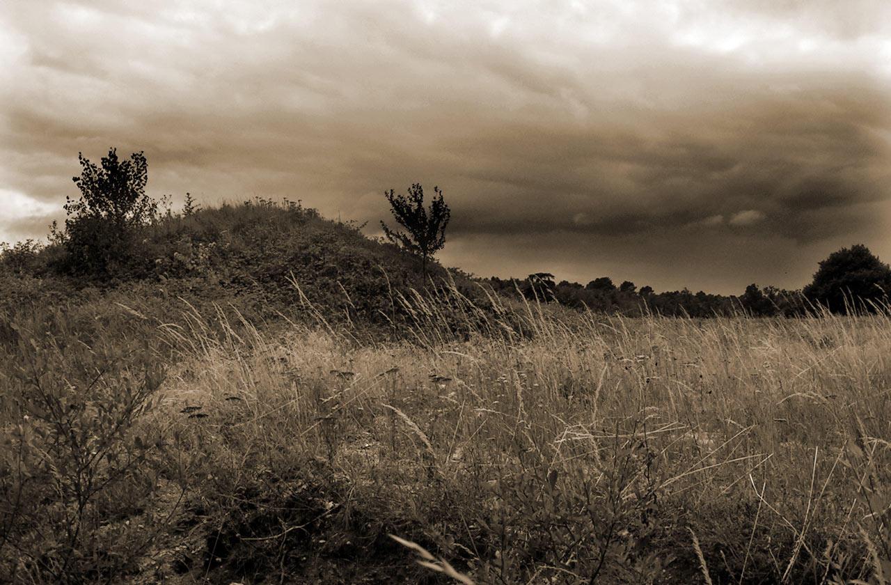 Dark landscape by sicho on DeviantArt