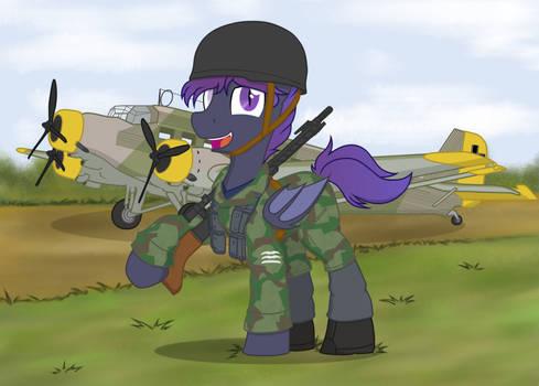 Commission- Fallschirmjager