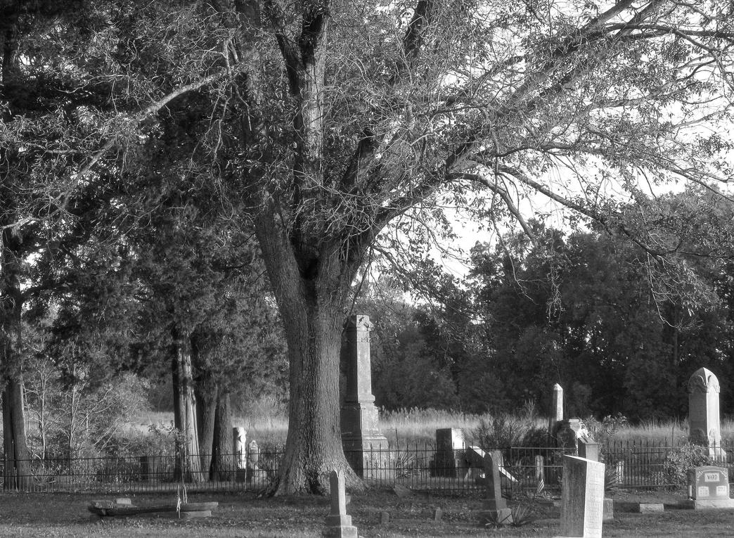 Hinchcliffe Cemetery 2 by 12of8