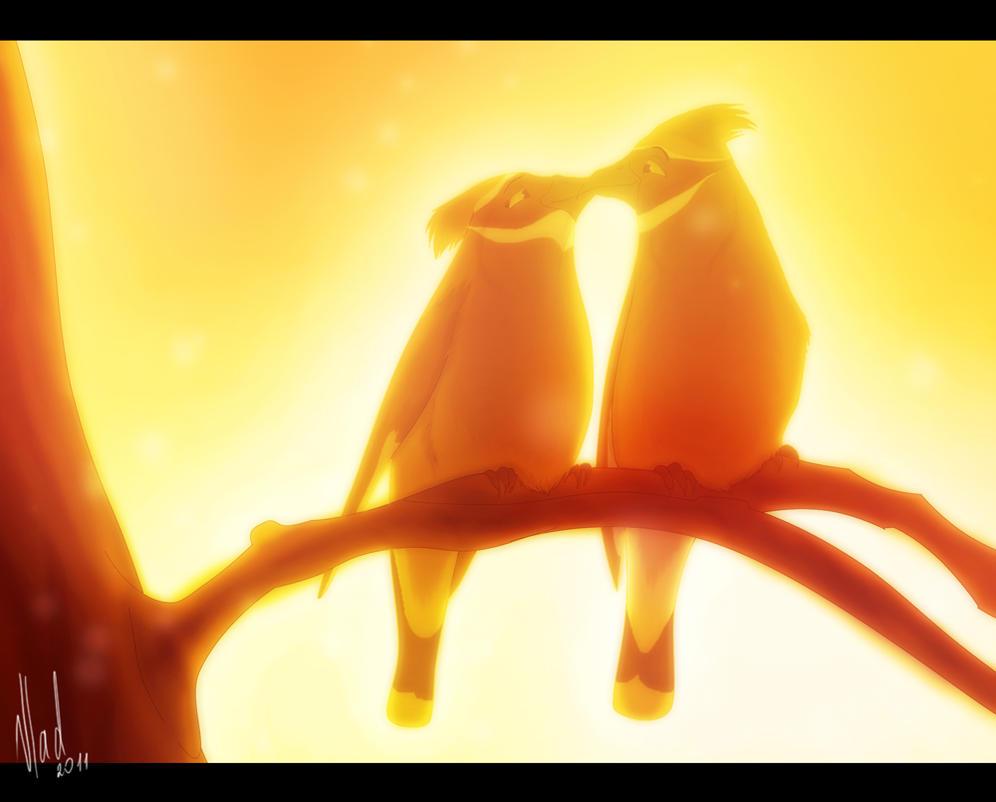 - Love birds - by DevaPein