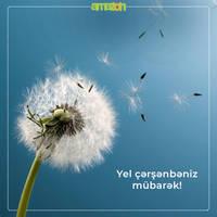 Yel chersenbesi