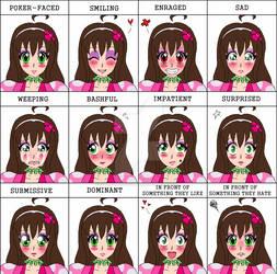 My Buddy and I: Expression Meme (Mariko) by Ichigooneechan66