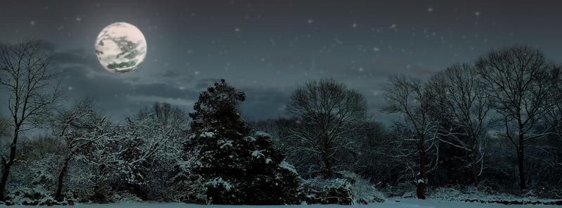 FB-Cover-Photo-Night-Scene by Quixotikka
