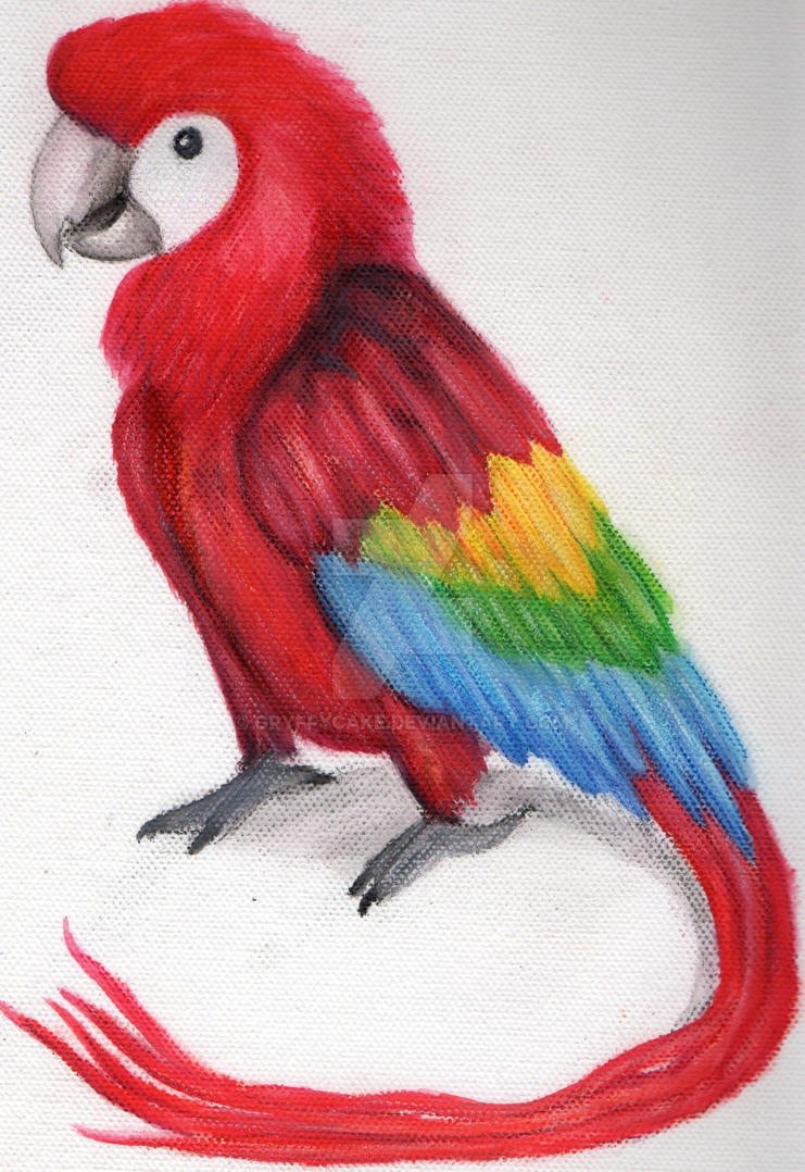 Beautiful Parrots Drawing Pencils Easy Golfclub